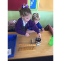 Using red cabbage water as an indicator to measure the acidity