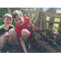 Max and his brother have made an amazing bug hotel