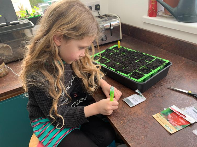 Violet busy planting.