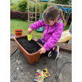 Planting time with Bella