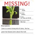 Susie Celery is kidnapped!