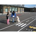 Quince (guide dog) follows instructions