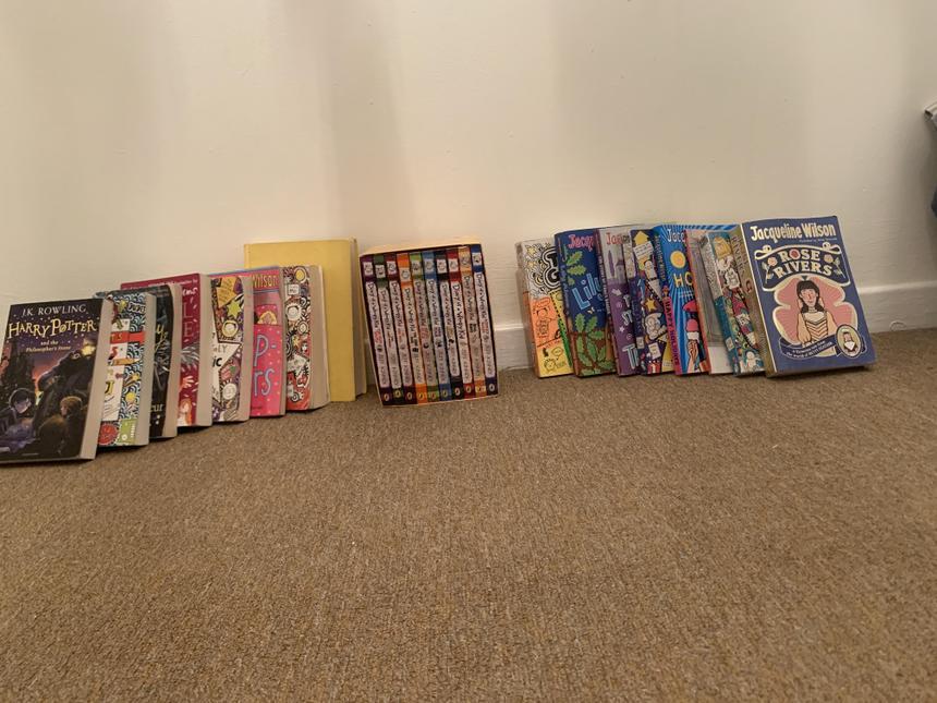 Hayah has read 26 books!