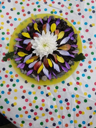 Greg's flowers saucer close up