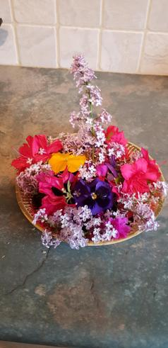 Zara's flower saucer