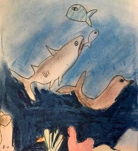 White Tip Shark and Fur Seal by Arissa (using oil pastels)