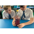 science - investigating components of the blood