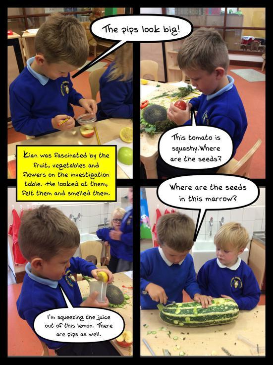 Investigating Fruit.JPG