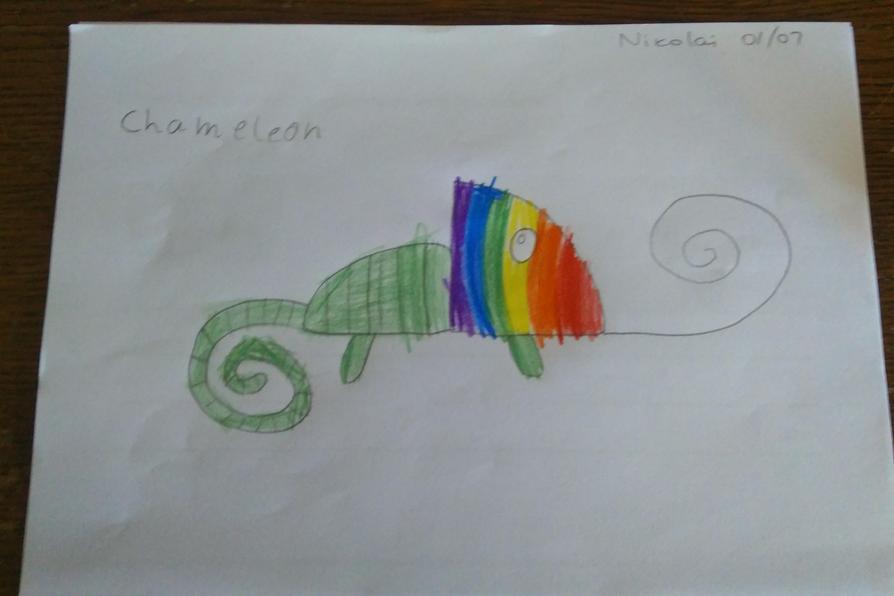 This is a beautiful chameleon Nikolai