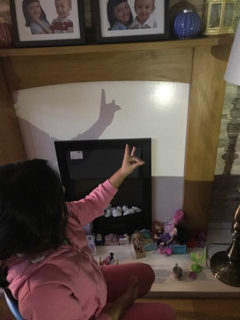 Making shadow animals is lots of fun!