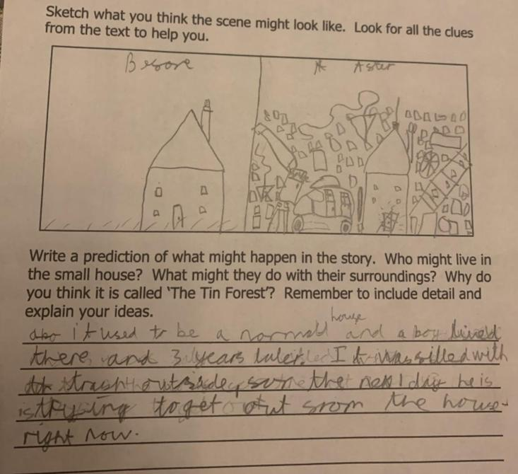 Noah's Tin Forest prediction - I love the before and after picture!