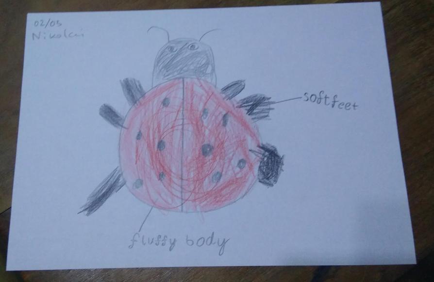 Your ladybird sounds lovely Nikolai, great adjectives!