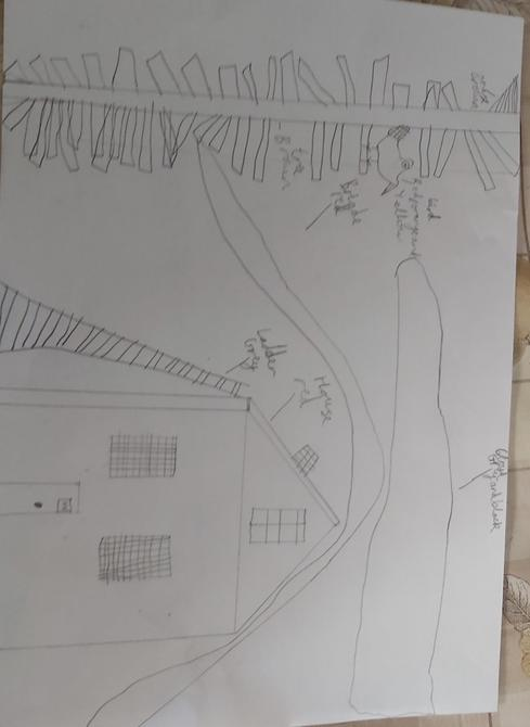 Rehan's plan for his own tin forest model