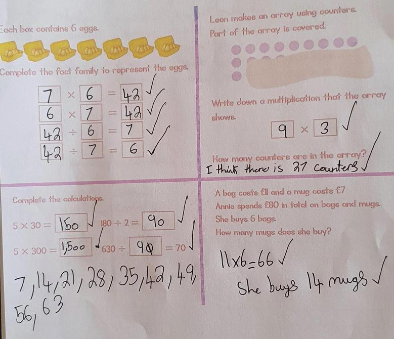 Great maths home learning by Alesha