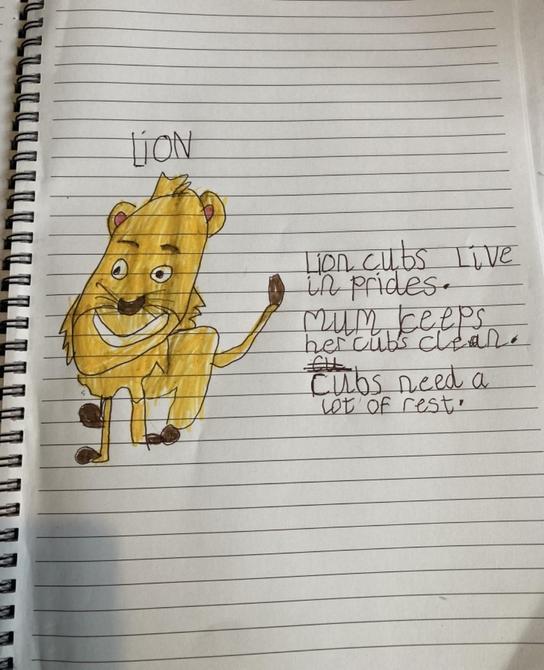 Fantastic facts Logan