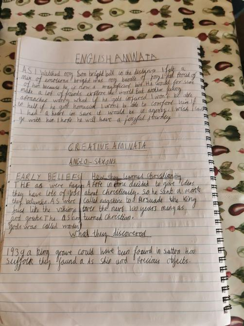 Lovely English and History work Aminata