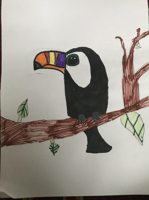 Lovely Toucan interpretation Aarya