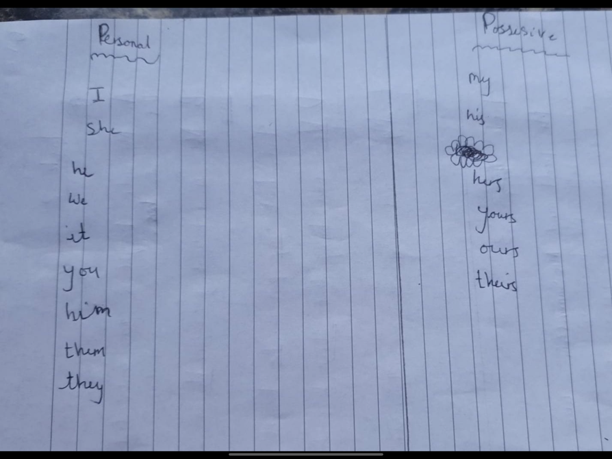 Bhuvi' s pronouns