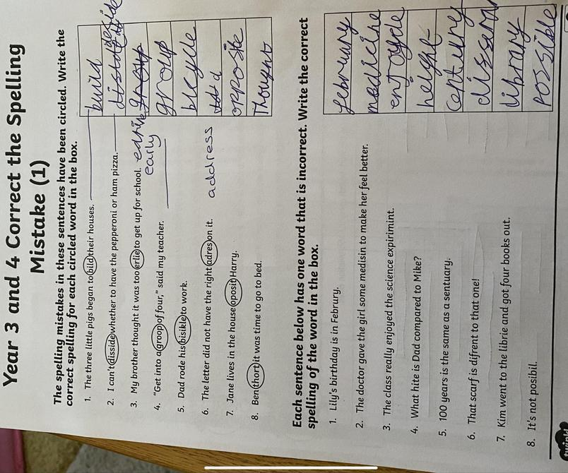Lilyrose B's corrections