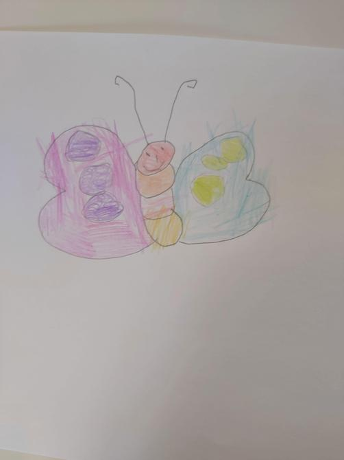This is a beautiful butterfly Sofia!