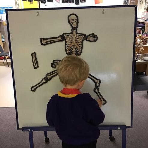 'The leg bones connected to the ... la la la!'