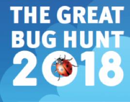 http://www.schoolscience.co.uk/bughunt