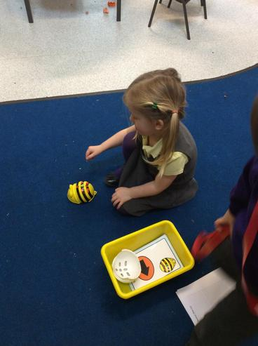 Exploring the Beebot