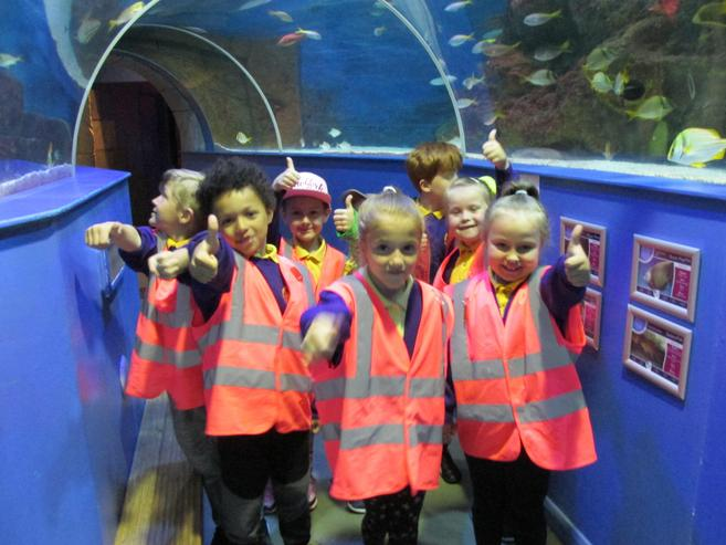 We loved the tunnel!
