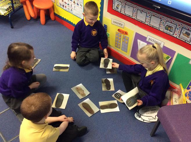 Looking at different shoe prints.