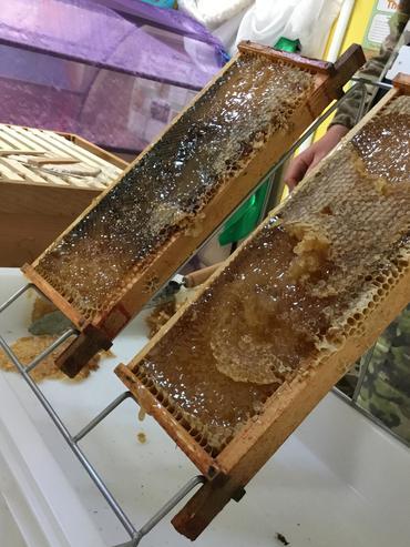 Honey! yum yum