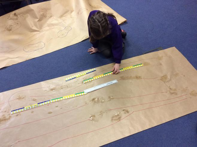 Measuring our stride.