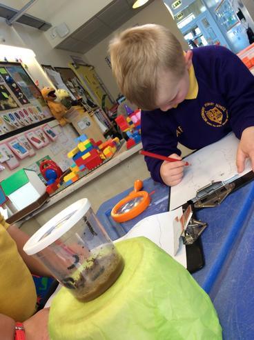 Caterpillar writing