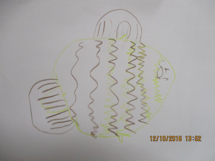 Milena's drawing about the fish.