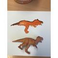 Painting raptors