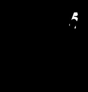 Netball Y5 + Y6