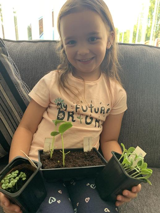 Amiah growing seeds!
