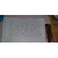 Amelia L's Big Write!