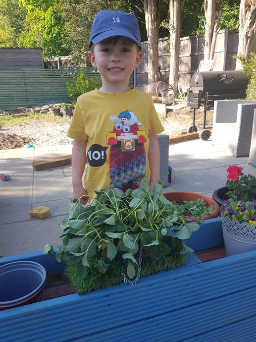 Corben helping to grow plants