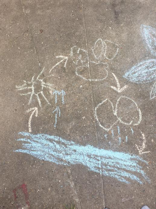 The water cycle in chalk - Lexa