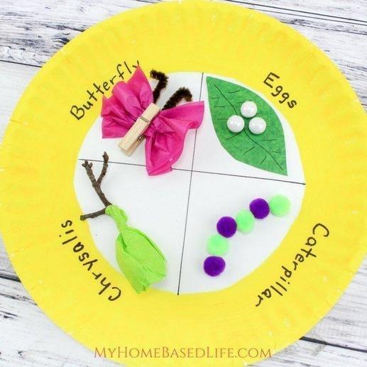 Craft Life Cycle