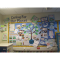 Eco Display 2019-2020