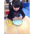 Exploring sugar snap peas