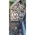An amazing bug house built