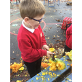 Using tools to explore vegetables