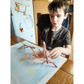 Making stick insects