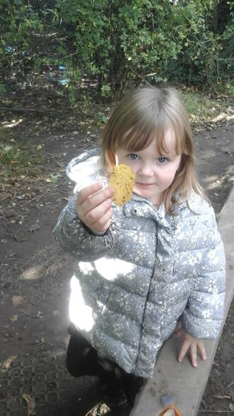 We found lots of autumnal objects.
