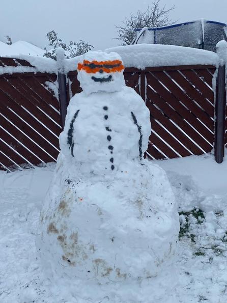Jake's snowman