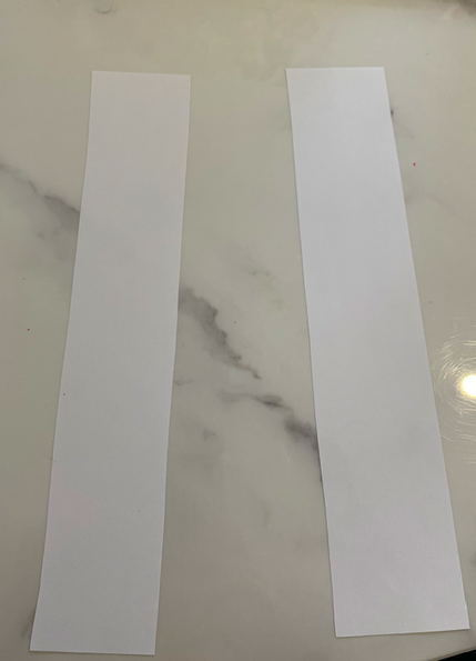cut 2 thick strips of paper