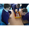 Exploring plate tectonics and the impact this has on our Earth