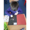 Week One-Year 1 & 2-  This week we collected resources from the natural environment.